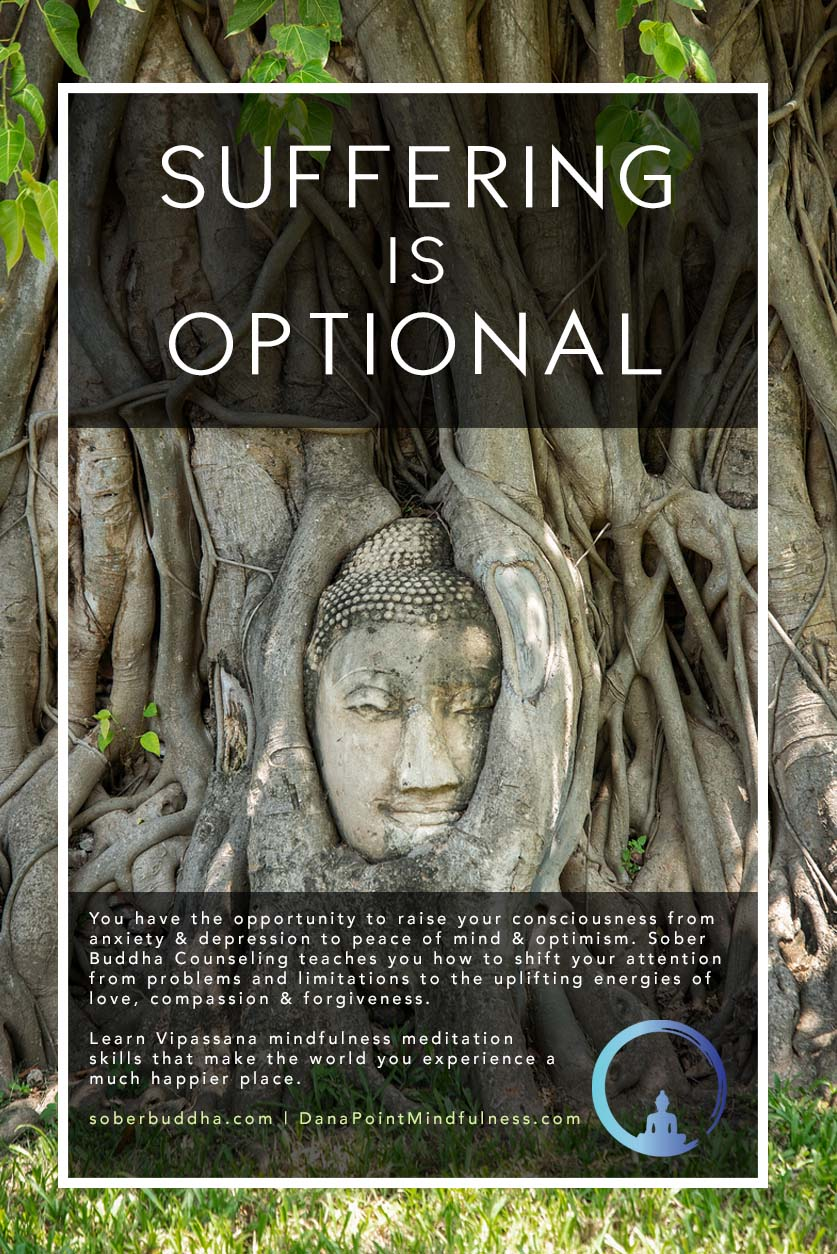Suffering is Optional Poster